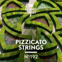 KL192 Pizzicato Strings